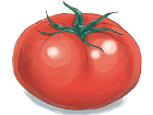 s_s_h_tomato.png